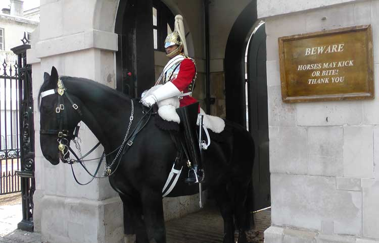 A soldier outside Horse Guards.